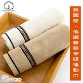 美國棉*低調奢華窄版運動毛巾(單條包裝) 【台灣興隆毛巾製】