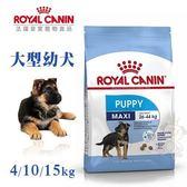 *WANG*法國皇家AGR32《大型幼犬》4Kg
