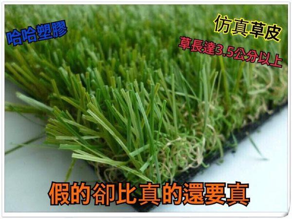 仿真草皮 假草 人工草皮 草地毯 人造草皮 塑膠草皮 零剪1CM=5元 哈哈塑膠 進口高品質