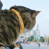 狗狗龍貓咪牽引繩龍貓繩子拉項帶套脖遛狗繩小型犬栓龍貓繩寵物用品【中秋節85折】