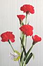 [紅色] 一支5朵花 人造康乃馨.假康乃馨.仿真康乃馨 母親節禮物花束☆人造花.居家.店面.櫥窗擺飾