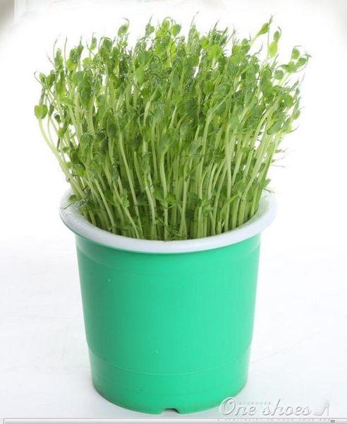 豆芽罐 家用生豆芽機 麥飯石塑料大容量豆芽菜種植桶發綠豆黃豆芽 全館免運