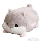 倉鼠毛絨玩具布娃娃公仔玩偶女生暖手抱枕插手毛絨可愛男生款睡覺  茱莉亞