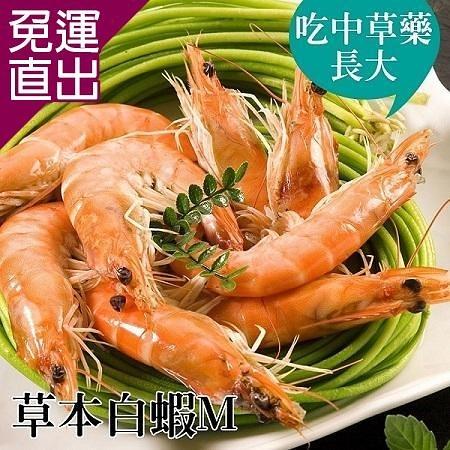 台江漁人港 草本白蝦(M)(半斤/包,共二包) EE0280022【免運直出】