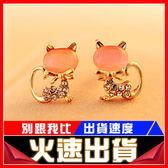 [24hr-現貨快出] 貓眼石 鑲鑽 閃耀 貓咪 耳釘 韓國 韓版 可愛 小動物 耳飾品