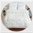雙人棉被胎 / 台灣製造雙人6X7尺保暖透氣纖維被/雙人冬被 【老婆當家】