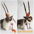 寵物狗狗頭飾大聖孫悟空飾品裝扮貓咪發飾搞笑配飾【小獅子】