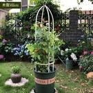 簡易花架爬藤架鐵線蓮攀爬花架綠蘿鐵藝柱形花支架月季花歐月戶外 夢幻小鎮