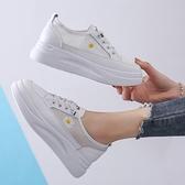 增高鞋 小白鞋女2020年春季新款夏季薄款女厚底內增高網紅小雛菊淺口單鞋