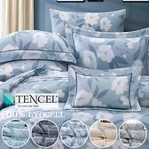 100%天絲.60支.超柔觸感.標準雙人床包組兩用鋪棉被套全套.【名流寢飾家居館】