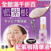 【小福部屋】日本製 藍紫根 精華液 20g 熱銷第一【新品上架】