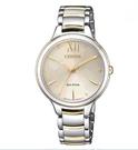 [COSCO代購] W126468 Citizen女錶 Citizen Women s Watch