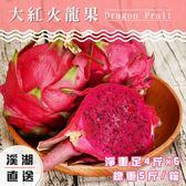 【吉寶好鮮】溪湖高磅紅肉火龍果禮盒