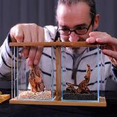 魚缸 生態鬥魚缸小型創意桌面魚缸迷妳微景觀辦公桌面客廳玻璃瓶免插電 igo卡洛琳