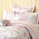 床包被單組四件式/全套-雙人特大尺寸-100%天絲/台灣製-毬蘭物語-54068