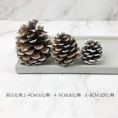 BEAGLE 刷白6-8公分 乾燥花 松果 單顆 松塔 素材 不凋花 人造花 乾燥花束 花藝設計 攝影佈景