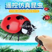 遙控昆蟲動物模型兒童新奇玩具整蠱禮物男孩模擬抖音有趣的小玩意   走心小賣場