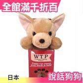 【吉娃娃】日本 WTP說話狗狗 可說話 走路 模仿 安啾相似款 交換禮物 生日 聖誕【小福部屋】