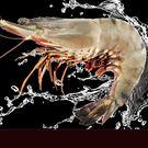 活凍特級大草蝦 5尾 400g±10%/盒