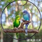 仿真樹脂鳳頭虎皮金剛鸚鵡鳥類動物雕塑擺件庭院花園林裝飾品掛件最低價 優家小鋪