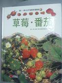 【書寶二手書T6/少年童書_ZHO】草莓.番茄_沈志誠