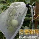 防鳥防蟲袋子水果網袋 【全館免運】