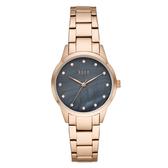 【ELLE】/優雅晶鑽貝殼面腕錶(男錶 女錶 Watch)/ELL25004/台灣總代理原廠公司貨兩年保固
