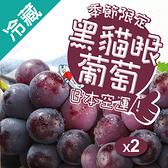 日本特選貓眼黑葡萄1串/盒X2(500g±5%/串)【愛買冷藏】