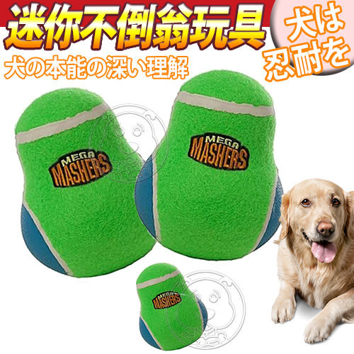 【zoo寵物商城】 R2P狗狗系列》強化橡膠迷你不倒翁造型狗玩具/個