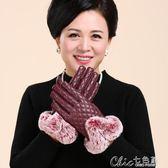 防風手套 皮手套女士冬季觸摸屏保暖加絨加厚手套女防風防寒中老年媽媽手套 魔方數碼館