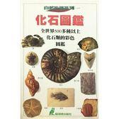 (二手書)化石圖鑑