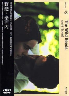 野戀  DVD (音樂影片購)