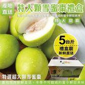【果之蔬-全省免運】LV等級特大顆雪蜜棗禮盒x1盒(5斤盒±10%含盒重/盒)