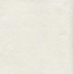 歐NINE壁紙-細絲刷紋 白65801