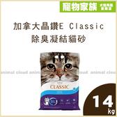 寵物家族-加拿大晶鑽E Classic 除臭無味凝結貓砂14kg(品質不輸Ever Clean)