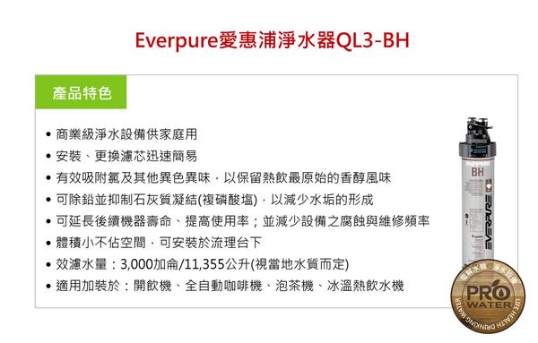愛惠浦淨水器~愛惠浦雙溫飲水設備EVB-H188+愛惠浦QL3-BH2濾水器(廚下型加熱器)(含304不鏽鋼龍頭)