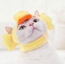 貓咪頭套可愛寵物帽子拍照道具