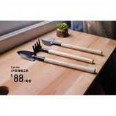 CARMO園藝3件套種植多肉工具 鏟子/耙子【C001001】
