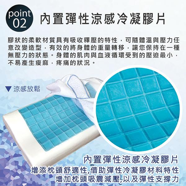 【Victoria】冷凝人體工學型記憶枕_TRP多利寶