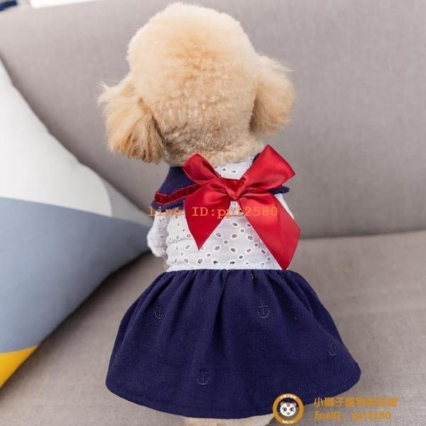 新款寵物夏裝狗狗貓咪夏季衣服泰迪比熊博美貴賓夏天裙子小型犬小狗狗【小獅子】