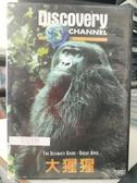 挖寶二手片-P72-033-正版VCD-其他【大猩猩】-Discovery自然類(直購價)