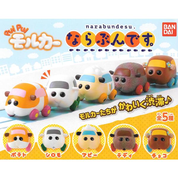 全套5款【日本正版】天竺鼠車車 排隊公仔 扭蛋 轉蛋 PUI PUI 排排站公仔 Molcar BANDAI - 660859