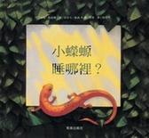 (二手書)小蠑螈睡那裡?(中文精裝+中英雙語CD&英譯文小摺頁)