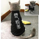 貓咪衣服春夏薄款連帽T恤親子寵物裝純棉狗衣服漢字脾氣極差  范思蓮恩