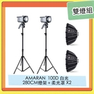 APUTURE 愛圖仕 AMARAN 100D LED 持續燈 + 280CM 燈架 + Light Dome mini 柔光罩 雙燈組