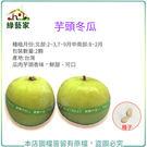 【綠藝家】G67.芋頭冬瓜種子2顆...