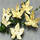 楓葉標本  滴膠乾花DIY手工花材押花材料乾花標本植物教學標本,一份12片