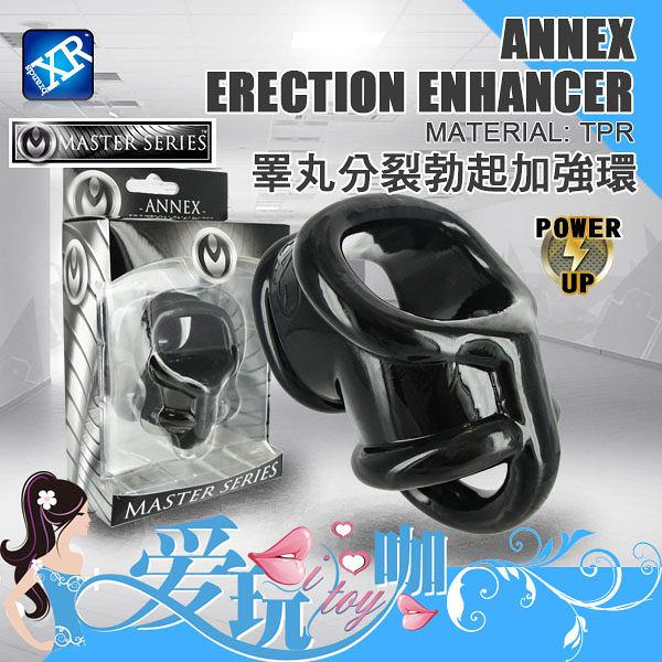 【盒裝】美國 MASTER SERIES 睪丸分裂勃起加強環 Annex Erection Enhancer 屌環