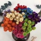 永生花花材,巴西進口快樂花迷你小花,一份10支裝,多色可選