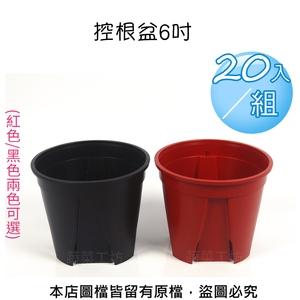 控根盆6吋 -  20入/組 (紅色/黑色兩色可選)黑色